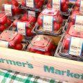 【青空レストラン】オスミックトマト(千葉市)の通販・お取り寄せ情報