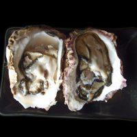 【ごはんジャパン】天然岩牡蠣(能登柴垣産)の通販・お取り寄せ情報!
