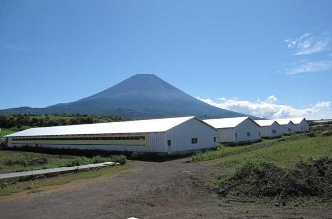 富士ヶ嶺の農場