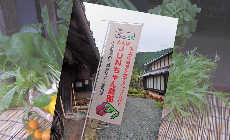 「丹波JUNちゃん農園」ののぼり