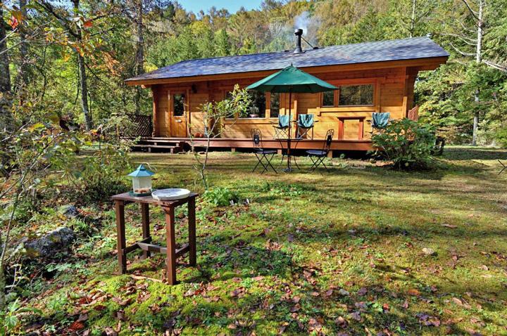林間に建つ「高原カフェ こもれび」