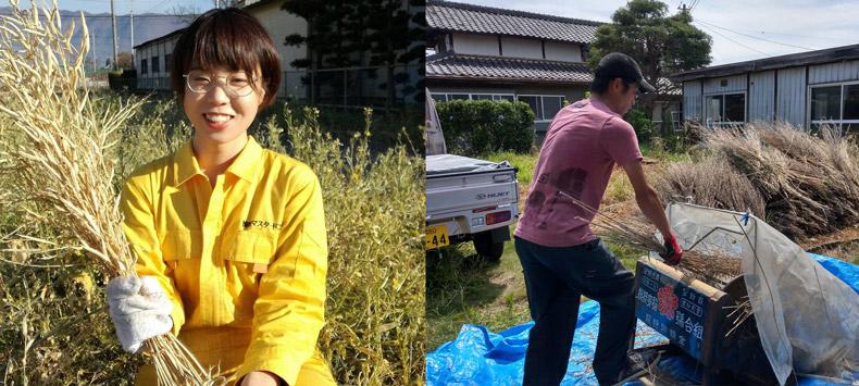 ぴりまるけの風間早希さんと八木優彰さん